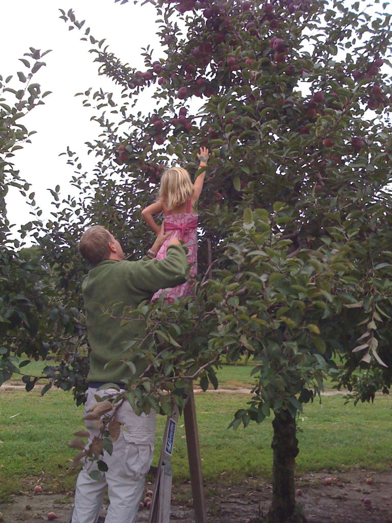 Apple picking was a favorite of ours.